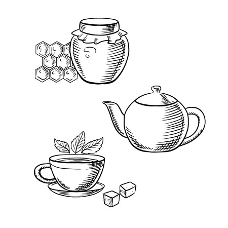 Cup of tea with fresh tea leaves and sugar cubes, retro teapot and glass jar of honey with honeycomb. Sketch icons for food and drink or healthy breakfast theme