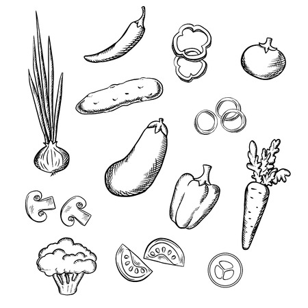 bell tomato: Fresh healthful tomato, carrot, cucumber, eggplant, onion, mushroom, chilli, bell peppers and broccoli vegetables. Sketch icons for vegetarian food, recipe book or agriculture design