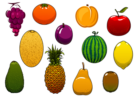 Sweet fresh cartoon orange, apple, grape, watermelon, pineapple, lemon, avocado, melon, kiwi, plum, apricot, pear fruits, for agriculture or dessert design