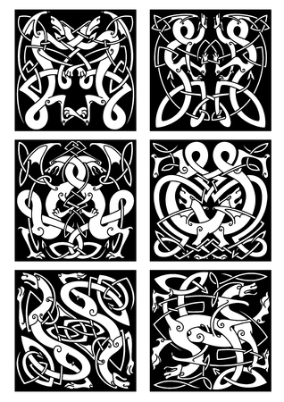 Medieval celtic knot patterns of dragons with entwined wings and tails on black background for tribal tattoo design