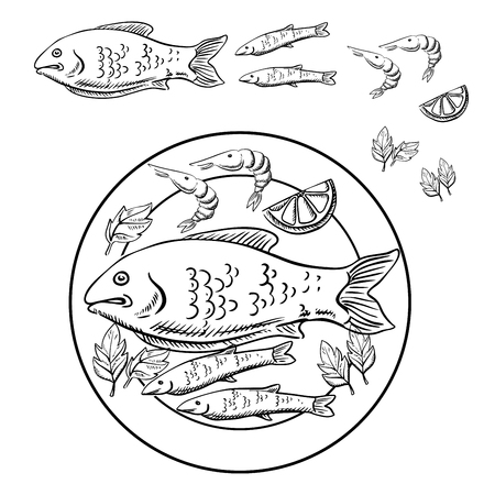 fresh seafood: Fish and shrimps with fresh lemon slice and parsley leaves served on a plate. Sketch of seafood dish for menu or cooking recipe book design