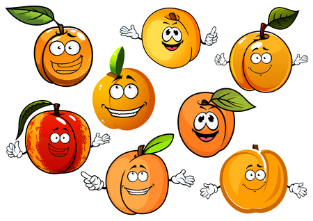 orange fruit: Happy red and orange peaches, nectarines and sweet aroma yellow apricots fruits with green leaves in cartoon style, for agriculture and food design