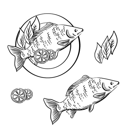 fry: Dish with smoked fish, garnished with lemon slices and fresh herbs. For seafood recipe book or menu design, sketch style