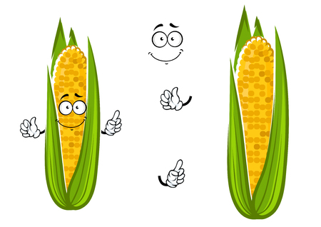 sweet corn: Cartoon cob of juicy sweet corn vegetable character with bright yellow kernels, for healthy vegetarian food theme design