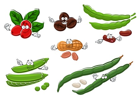 in peas: Healthy vegetarian fresh and roasted coffee beans, peanuts, green sweet pea pods and beans with green, white and brown grains cartoon characters. For agriculture design Illustration