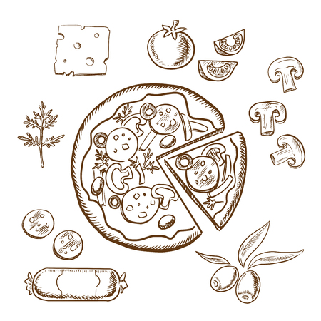 salami: Pizza with ingredients surrounding a sliced pizza and salami, herbs, tomato, cheese, mushrooms and olives. Sketch icons Illustration