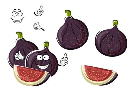 新鮮な熟した甘くて紫イチジク カリカリ種子とカットに線維性のピンク肉と果物の漫画のキャラクター。農業や健康的なベジタリアン デザート デ