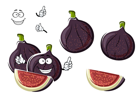 purple fig: Fresh ripe and sweet purple fig fruits cartoon character with crunchy seeds and fibrous pink flesh on the cut. Happy smiling fruits for agriculture or healthy vegetarian dessert design