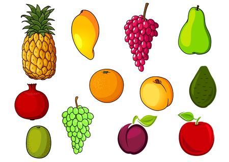 cocina caricatura: Granja fresca y naranja madura, frutas de manzana, pera, melocotón, uva, piña, kiwi, mango, ciruela, granada, aguacate rojos. cosecha de la agricultura o el diseño de alimentos naturales