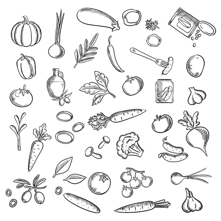 pickles: Healthy vegetables flat icons with fresh tomatoes, carrots, cucumbers, potato, peppers, onions, mushrooms, pumpkin, olive oil with fruits, garlics, pickles, sweet corn, eggplant and beet