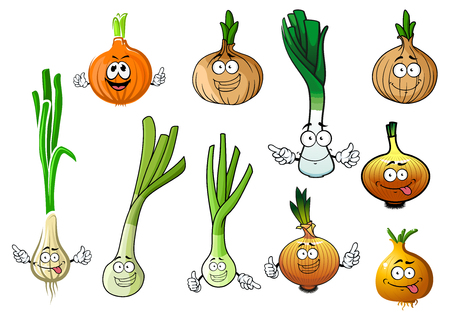 yellow bulb: Cartoon green onions, fresh juicy leek and dried yellow bulb of common onions vegetables. Illustration