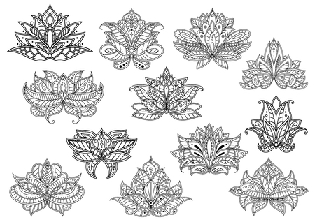 Oriental outline paisley flowers with ethnic persian, indian and turkish openwork motifs. Floral elements for textile, interior accessories or carpet pattern design Illustration