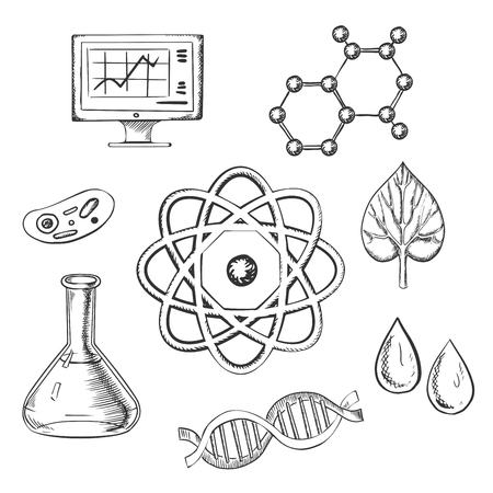 Biology and chemistry sketch icons with fresh leaf surrounded by round icons depicting insects, microscope, computer, water, chemical analysis, atoms for physics and DNA for genetics, vector illustration