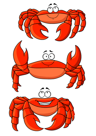 hardshell: Happy cartoon ocean red crabs characters with large claws. Addition to children book, seafood, marine emblem and mascot design