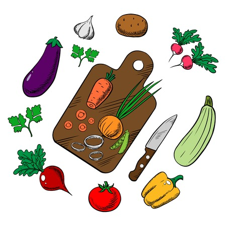 potato salad: Cooking process of a vegetarian salad with knife, chopping board and tomato, carrot, green pea, onion, potato, bell pepper, garlic, radish, beet, eggplant, zucchini, parsley vegetables. Colorful sketch vector Illustration
