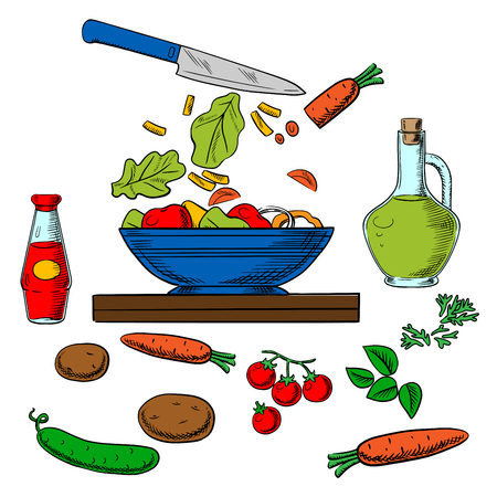 Cooking salad process with sliced fresh vegetables surrounded by whole carrots, cucumber, tomatoes, potatoes, spicy herbs, bottles of olive oil and soy sauce. Colorful sketched objects Illustration