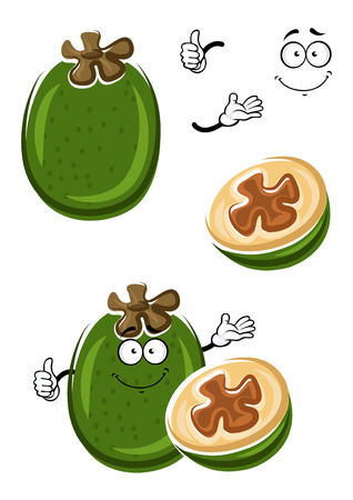 flesh: Ripe tropical feijoa fruit cartoon with green peel and sweet juicy flesh with seeds on the cut. Funny pineapple guava for recipe book, healthy dessert or vegetarian food design