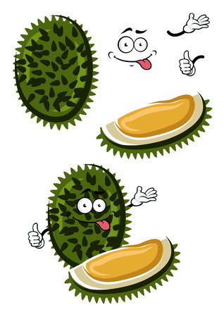asian cartoon: Funny cartoon exotic tropical durian fruit with dark green spiky peel and sweet yellow flesh. Healthy vegetarian dessert, recipe book or menu design usage