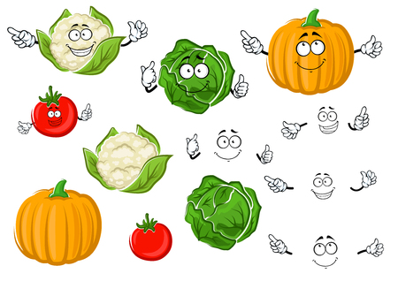 Colorful cartoon autumnal juicy red tomato, green crunchy cabbage, ripe orange pumpkin and curly head of cauliflower vegetable characters. Addition to agriculture harvest or vegetarian salad recipe design