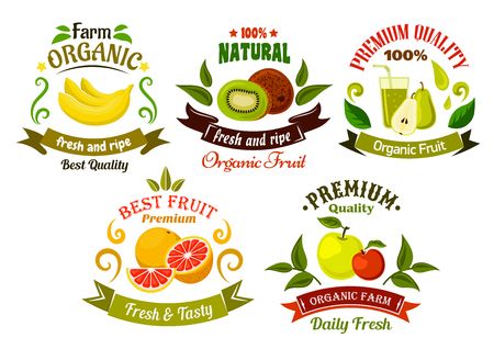 apples and oranges: Organic food emblems of healthy fresh fruits with apples, bananas, oranges, kiwis and pears with juice, framed by green leaves, vintage ribbon banners and colorful swirls