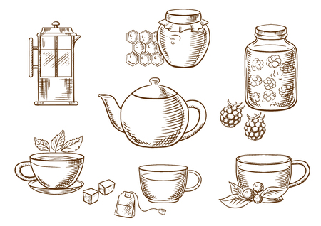 teapot: Sketched tea icons with jars, honey and raspberry jam, french press, various teacups with tea bag, sugar cubes, fresh leaves of mint and cowberry with porcelain tea pot. Vector sketch