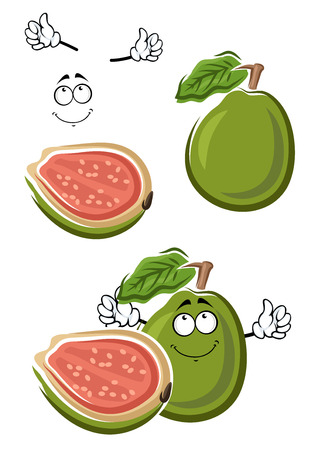 guava fruit: Cartoon tropical ripe green guava fruit with sweet pink pulp and seeds on the cut. Healthy vegetarian dessert menu, recipe book or juice design usage
