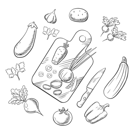 potato salad: Vector sketch. Cooking process of a vegetarian salad with knife, chopping board and tomato, carrot and pea, onion and potato, bell pepper, garlic and radish, beet and eggplant, zucchini and parsley vegetables