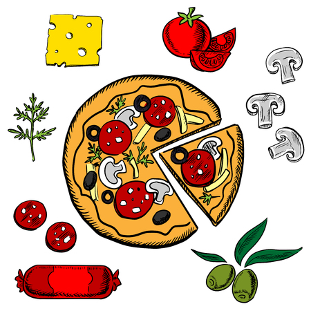 salami: Cooked sliced italian pizza with salami, herbs, tomato, cheese, mushrooms and olives ingredients Illustration