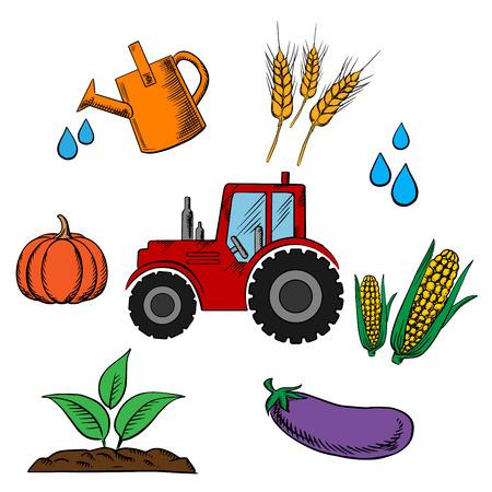 elote caricatura: la industria de la agricultura y la cría de iconos con los alimentos tractor de la historieta y un círculo de calabaza, trigo, mazorcas de maíz, berenjena, gotas de agua, granja y poder de riego
