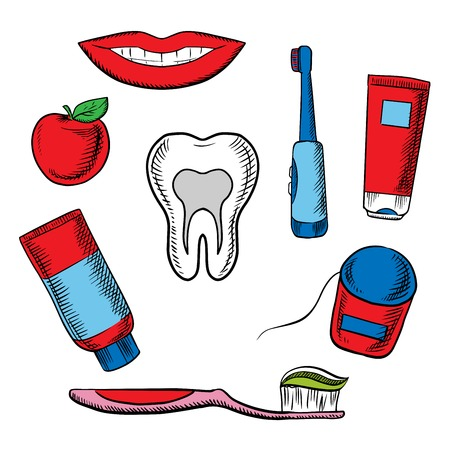 toothy smile: Dental hygiene medical objects with cross section of healthy tooth surrounded toothbrush, toothy smile, apple, toothpaste and floss