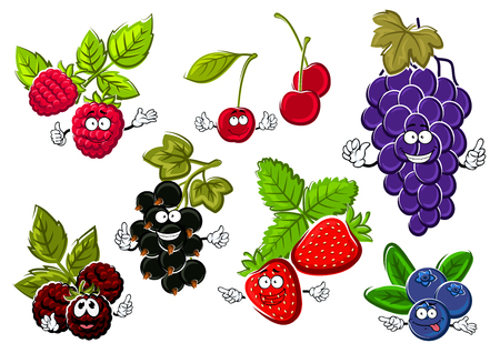 black grape: Garden berry fruits happy characters. Black currant, strawberry, raspberry, grape, blueberry, cherry and blackberry fruits