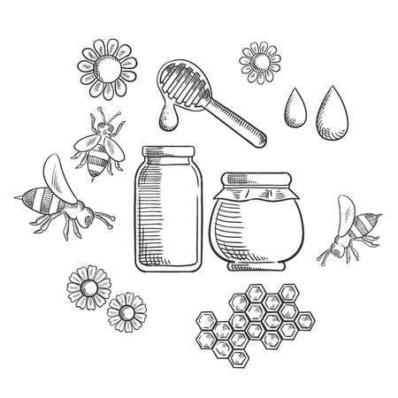 honey comb: Beekeeping and fresh honey icons with flowers and bees, pollen, bottle and jar of dripping honey Illustration