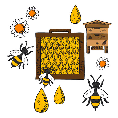 beehive: Beekeeping concept in flat style showing beehive, frame with honeycombs and bees flying around flowers and drops of honey on orange background with text Beekeeping Illustration