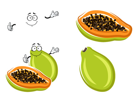 orange fruit: Healthful tropical papaya fruit with green peel, sweet and juicy orange pulp and small black seeds. Exotic recipe or vegetarian dessert menu design usage Illustration