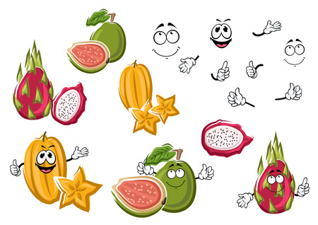 guava fruit: Cartoon tropical yellow star fruit, exotic asian pink dragon fruit and ripe green guava fruits. Tropical cocktails fruity ingredients or dessert recipe design usage Illustration