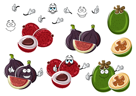 leechee: Cartoon fresh fig, exotic lychee and green tropical feijoa fruits isolated on white. Funny fruits characters for vegetarian exotic dessert, tropical cocktail recipe design usage