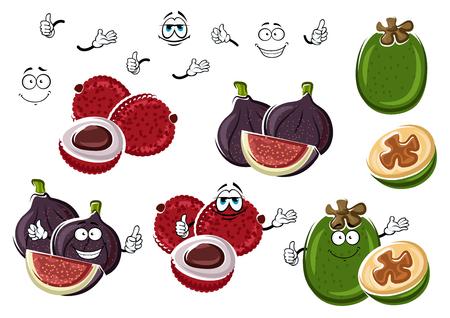jugo de frutas: De dibujos animados higo fresco, lichi frutas ex�ticas y tropicales feijoa verdes aisladas en blanco. Divertidos personajes de frutas para el postre ex�tico vegetariana, c�ctel tropical el uso del dise�o de recetas