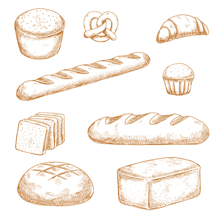 wheat bread: Delicious fresh baked bread, pastry and buns sketches with healthy whole grain bread, baguette, round and long loaves of wheat bread, french croissant, butter cupcake and soft pretzel Illustration
