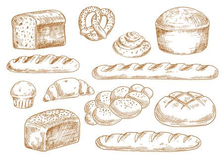 Tasty croquis de pain frais avec de longs pains, baguette, le blé et le pain de seigle, croissant, petit gâteau, bretzel, rouleau de cannelle et chignon tressé. Boulangerie et pâtisserie dans le style de gravure pour la conception de la nourriture Vecteurs