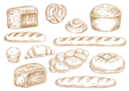 Tasty fresh bread sketches with long loaves, baguette, wheat and rye bread, croissant, cupcake, pretzel, cinnamon roll and braided bun. Bakery and pastry products in vintage engraving style for food design