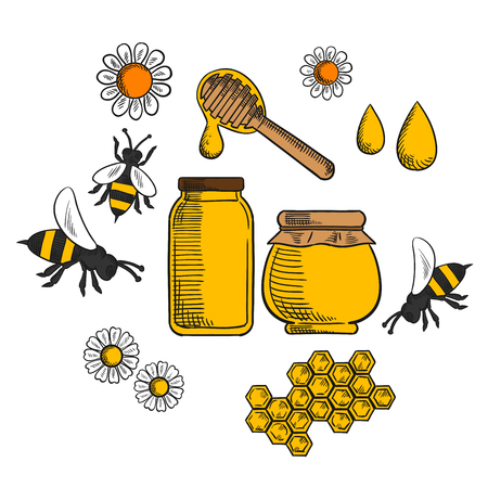 sketched icons: Beekeeping and farm honey sketched icons with flowers and bees, pollen, bottle and jar of dripping honey Illustration