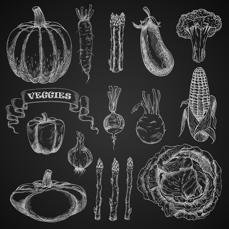 greengrocery: Chalk sketches of farm vegetables