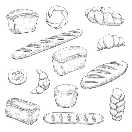 freshly baked: Retro bakery and pastry sketches with engraving stylized fragrant freshly baked baguette, healthy rye and delicious wheat bread loaves, crispy croissants with chocolate fillings, sweet soft pretzel and braided buns