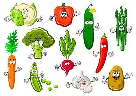Cartoon organische gezonde broccoli, zoete oranje wortel, heldere Spaanse peper en paprika, sappige komkommer, aardappel, knoflook, peul van groene erwten, bloemkool, asperges en radijs groenten. Gelukkig vegetarisch karakters voor de oogst landbouw ontwerp