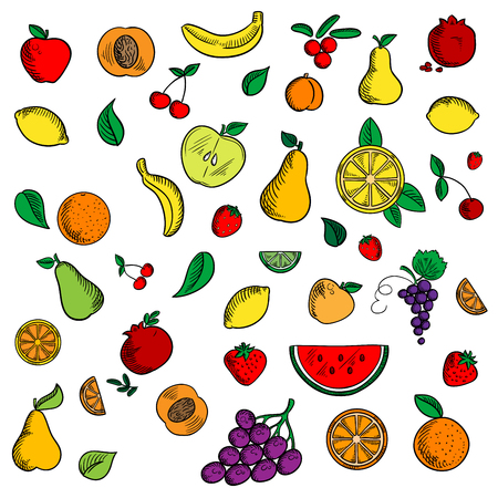 sketched icons: Sweet fruits and berries sketched icons with apple and banana, strawberry and pear, peach and orange, grape and lemon, pomegranate and cherry, cranberry and watermelon among mint leaves Illustration