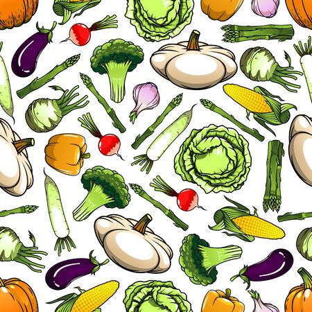 squash: Seamless pattern of wholesome cabbages and broccoli, corn cobs and eggplants, bell peppers and garlic, pumpkins and kohlrabi, asparagus and radishes, daikon and  pattypan squashes vegetables on white background. Agriculture theme