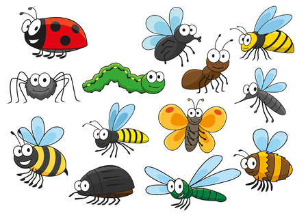 dragonflies: Friendly smiling cartoon bee and bug, butterfly and caterpillar, fly and ladybug, spider and mosquito, wasp and ant, bumblebee, dragonfly and hornet characters.