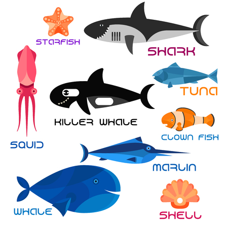marlin: Colorful giant blue whale, killer whale and reef shark, striped orange clown fish, shiny marlin and tuna, pink squid, starfish and seashell. Illustration