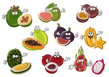 Exotic asian passion fruit and fig, papaya and lychee, starfruit and feijoa, guava, pitaya and durian fruits characters with happy faces. Illustration