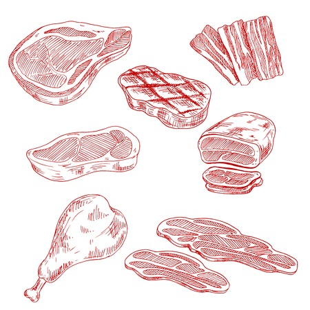 Farm-raised meat products sketches with beef steaks and tenderloin roast, bacon slices, grilled pork chop and chicken leg. Engraving sketches for old fashioned recipe book, cooking or restaurant grill menu design usage